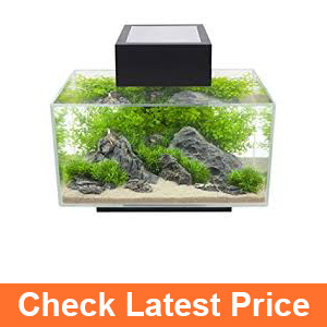 Fluval Edge Aquarium with LED Light