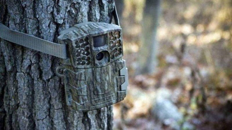 How do Trail Cameras Work