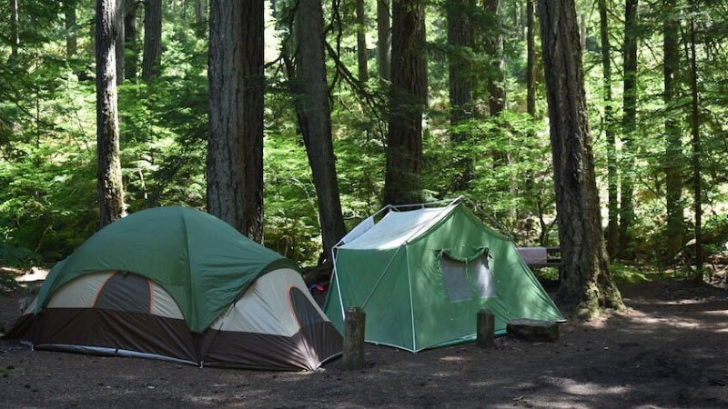 Why Camping is Good for You