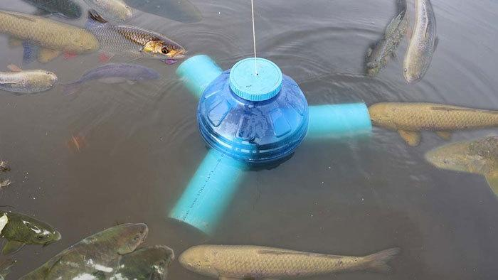Catfish-Trap-using-Plastic-Bottle